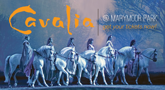 Cavalia at Marymoor Park