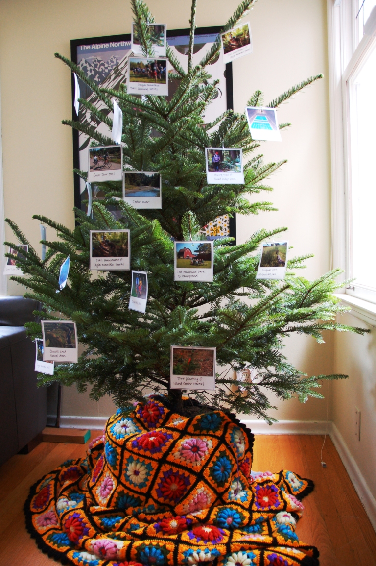 King County Parks Living Christmas  Tree decorated with Polaroid pictures of parks, trails and open space