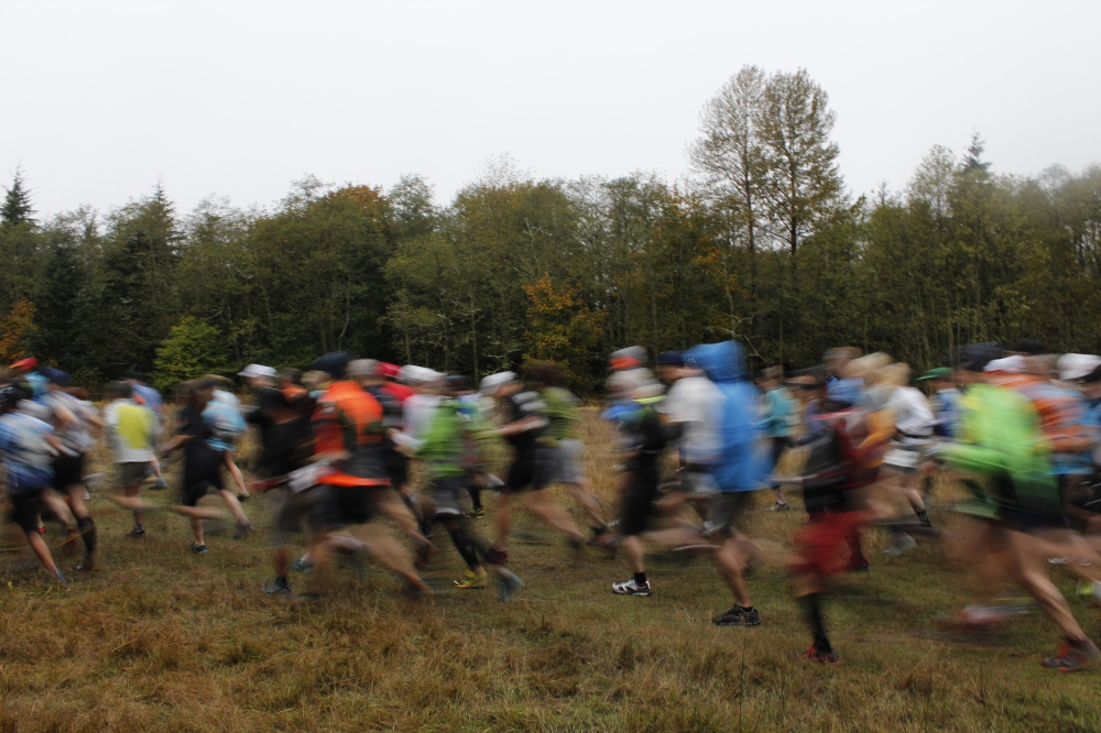 Cougar Mountain Trail Running Series