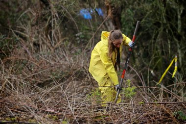 Americorps planting along Soos Creek Trail