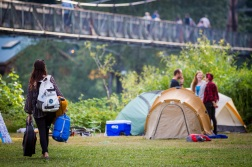 Timber! Outdoor Music Fest @ Tolt-MacDonald Park