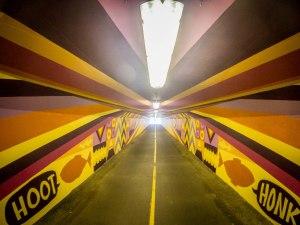 Ebb & Flow mural inside Wayne Tunnel