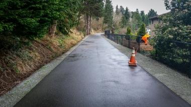 Burke-Gilman after fallen tree removal