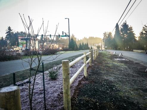 Landscape prep along Burke-Gilman in Kenmore
