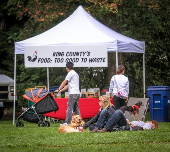 King County's CHOMP!