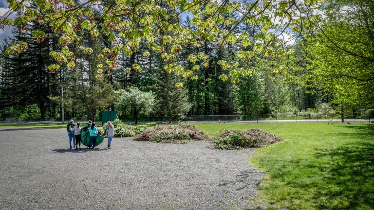 tahoma-jr-high-volunteering-at-ravensdale-park-and-cemetery-reach-natural-area_26677702185_o