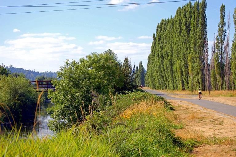 Sammamish_River_Trail_Biker