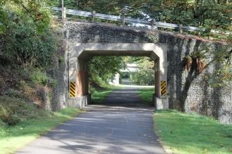 crt_trail-tunnel-close