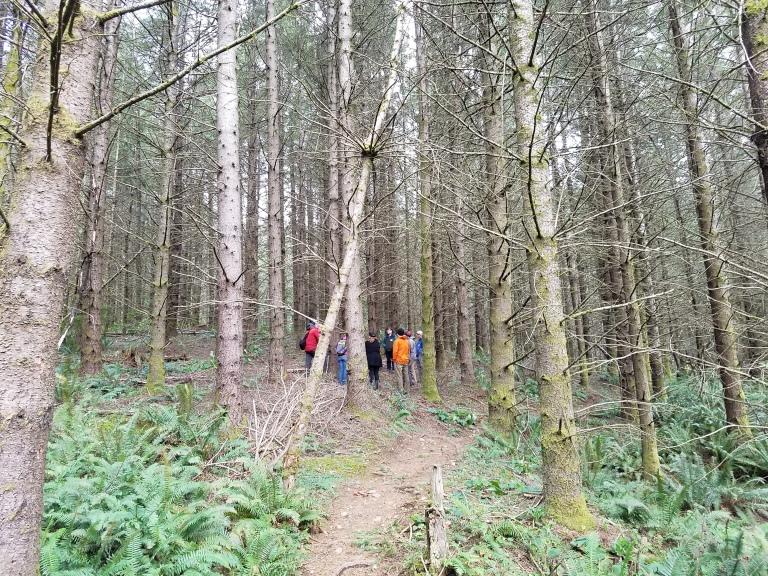 bdos-forest-tour