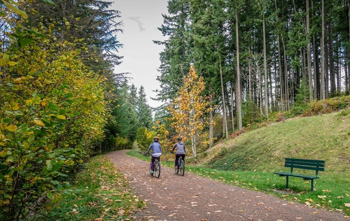 green-to-cedar-rivers-trail-bikers-bench