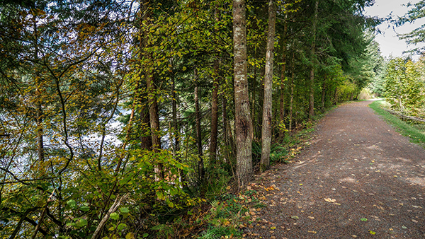 green-to-cedar-rivers-trail-lake-wilderness