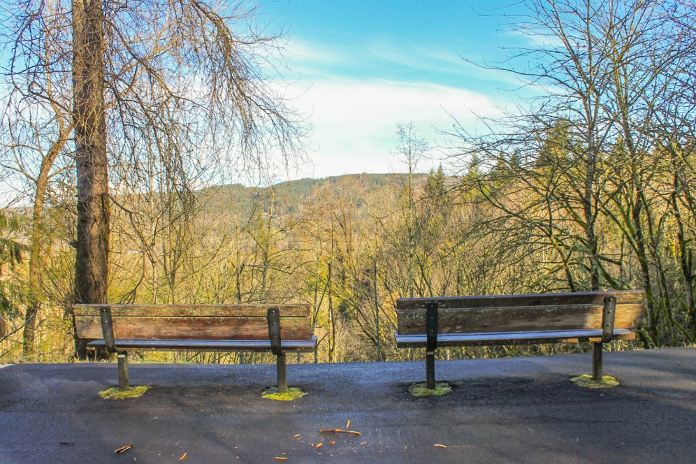 a-viewpoint-along-the-preston-snoqualmie-trail