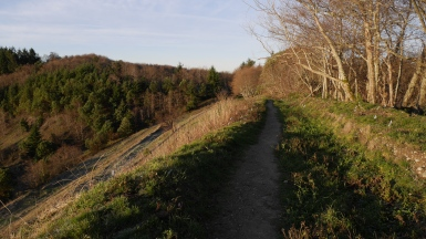 dockton_sunset_trail