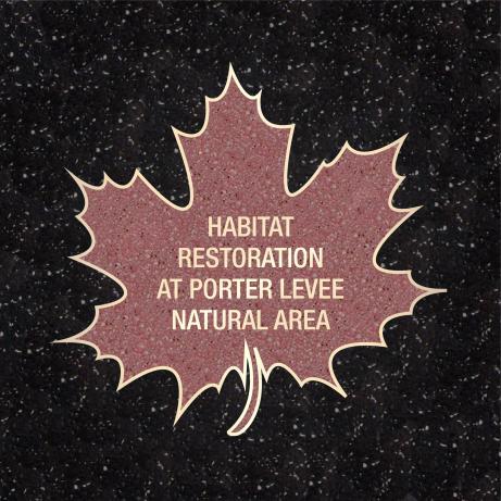 Habitat_Restoration