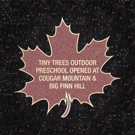 Tiny_Trees