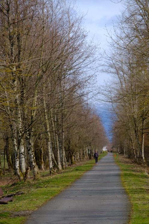 Foothills-trail-Enumclaw