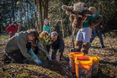 The Moose takes note on how to properly plant a seedling