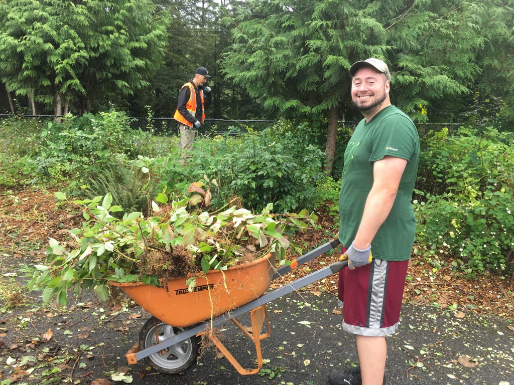 Adult volunteer with wheelbarrow full of weeds at Preston Athletic Fields on the United Way Day of Caring 2019.