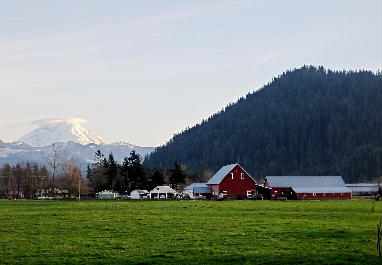 Scenic view of Mount Peak and Mount Rainier